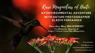 "Graphic for webinar, ""Rare Magnolias of Haiti: An Environmental Adventure with Eladio Fernández"""