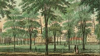 "Image of New Haven for the Yale Alumni Academy course, ""New Haven and the Four Ages of the American City"""