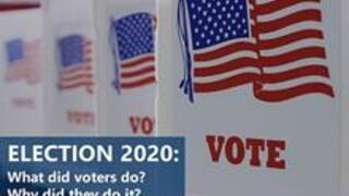 "Image for webinar, ""Election 2020: What Did Voters Do and Why Did They Do It?"""