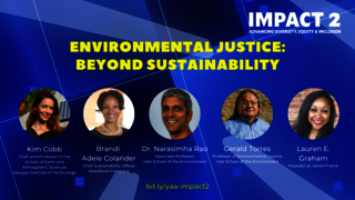 IMPACT 2: Environmental Justice: Beyond Sustainability