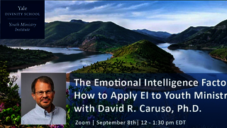 The Emotional Intelligence Factor