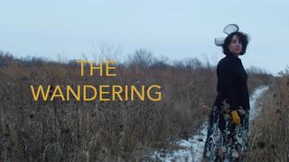 """The Wandering"" promotional image"