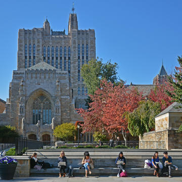 Students study outside Sterling Memorial Library.
